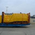 P1200717 (Medium)